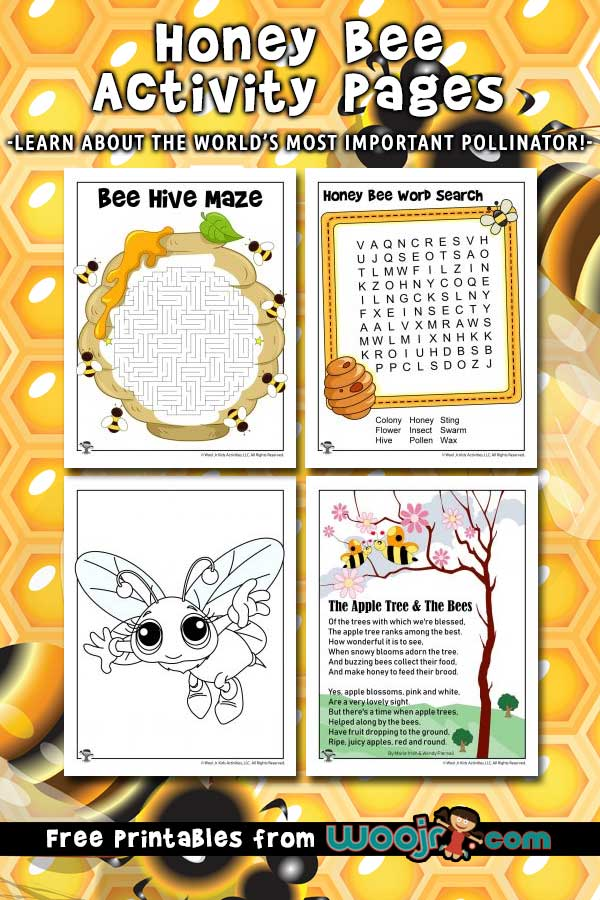 Honey Bee Activity Pages for Kids