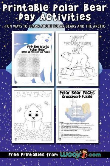 Polar Bear Day Activities for Kids