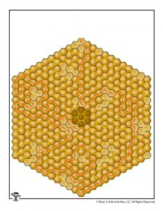 Bee Hive Hexagon Maze Answer Key