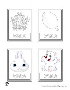 White Color Flashcard