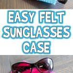 Easy Felt Sunglasses Case