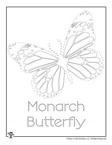 Monarch Butterfly Tracing Activity