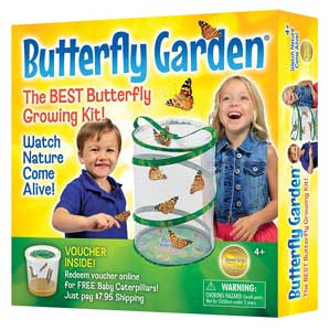 Monarch Butterfly Growing Kit