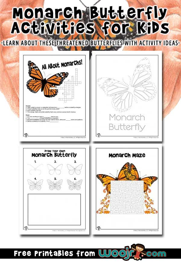 Monarch Butterfly Activities for Kids