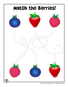 Match the Berries Preschool Activity