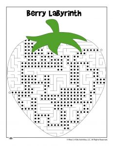 Berry Farm Maze Worksheet - ANSWER KEY