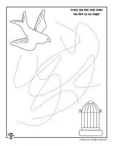 Bird Line Tracing Practice