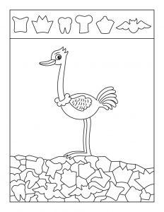 Ostrich Hidden Pictures