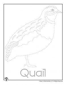 Q is for Quail Word Tracing