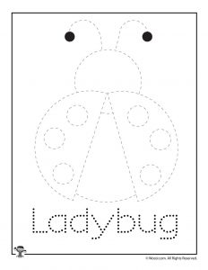L is for Ladybug Word Tracing