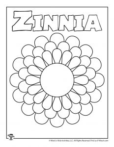 Z is for Zinnia Coloring Page