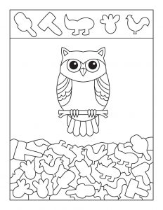 Cute Owl Hidden Picture Activity Page