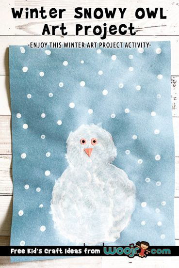 Winter Snowy Owl Art Project