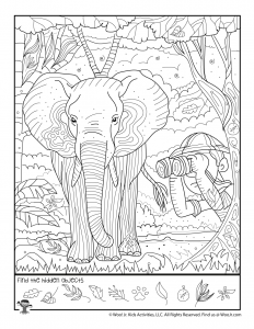 Safari Hidden Picture Worksheet