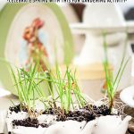 Egg Shell Planting Project