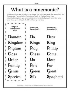 Taxonomy Mnemonics Printable Worksheet