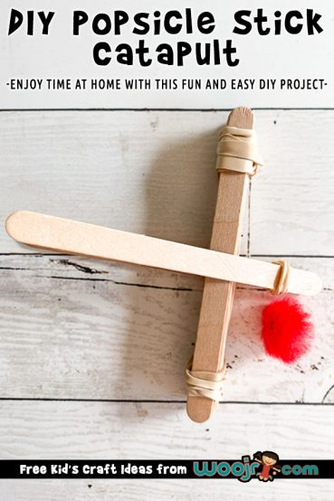 DIY Popsicle Stick Catapult Project