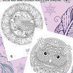 Bird Mandalas Adult Coloring Pages