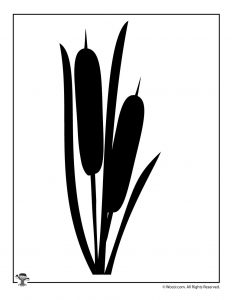 Cattail Nature Silhouette Shape