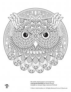 Owl Adult Mandala Coloring Page