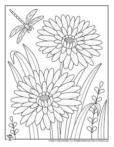 Dahlias and Dragonfly Adult Coloring Page
