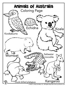Australia Animals Coloring Page