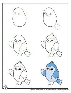 How to Draw Bluebird