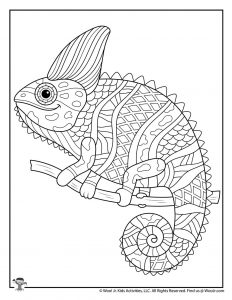 Iguana Detailed Adult Coloring Printable