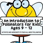 An Introduction to Pollinators for Kids Ages 9 – 12