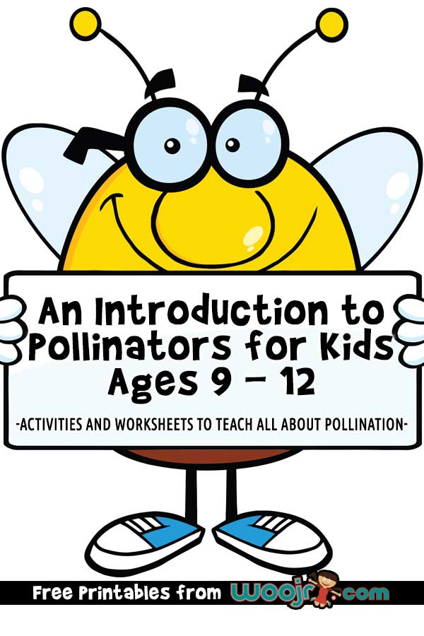 Pollinators for Kids Ages 9-12
