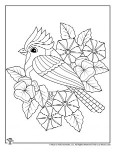 Spring Blue Jay Easy Adult Coloring Page