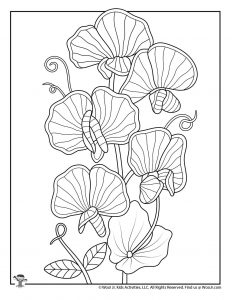 Climbing Florals Adult Coloring Page