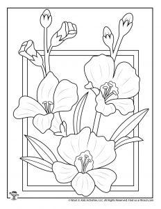 Elegant Spring Flower Coloring Page