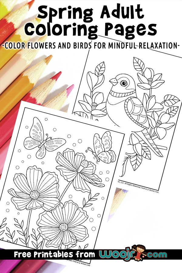 Winter birds on a branch free coloring printables | 900x600