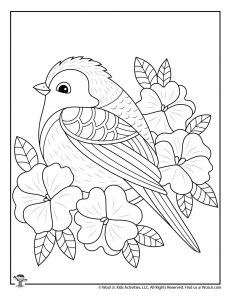 Spring Bird and Flowers Coloring for Teens
