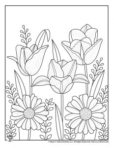 Tulips Adult Coloring Page