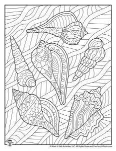 Seashells Adult Coloring to Print