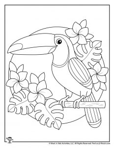 Summer Toucan Printable Coloring