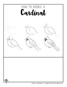 How do I Draw a Cardinal