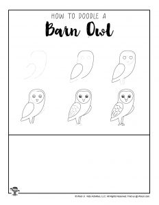 How to Draw Barn Owl