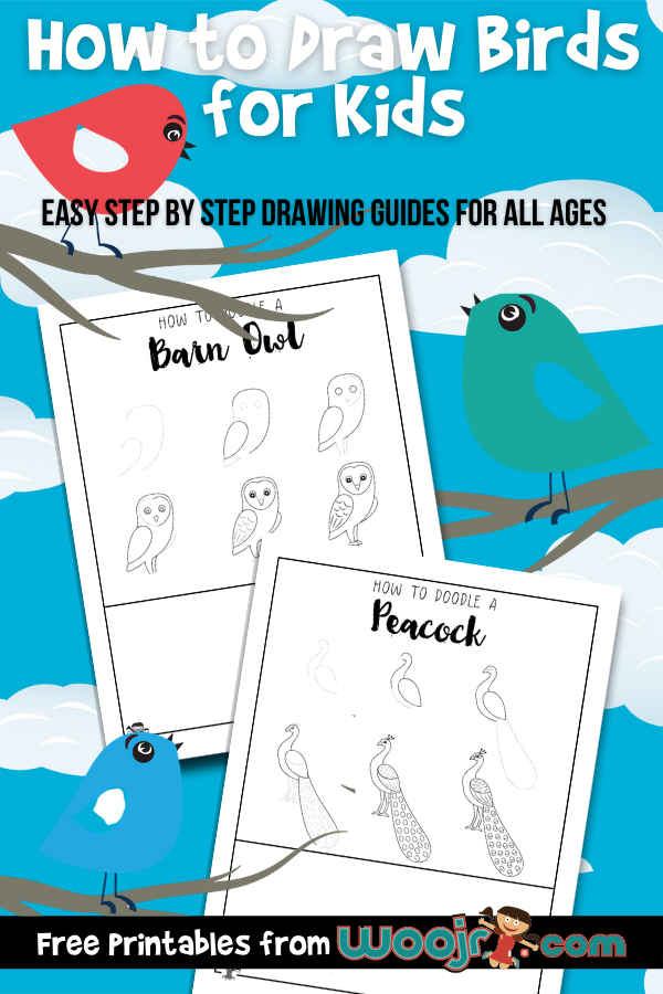 How to Draw Birds for Kids
