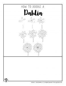 How to Draw a Dahlia