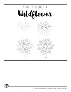 How to Draw a Wildflower for Kids