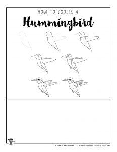 Kids Drawing Tutorial Hummingbird