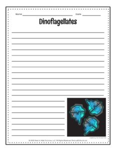 Dinoflagellates Bioluminescent Lesson Page Activity Page