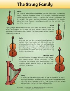 String Music Instruments