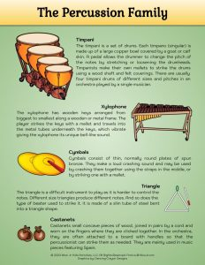 Percussion Family Musical Instruments Lesson