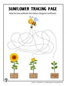 Little Kids Tracing Worksheet Printable