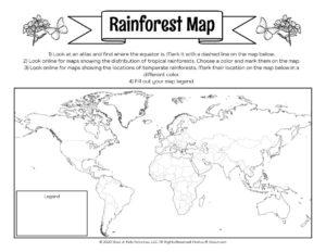 Rainforest Mapping Activity Worksheet