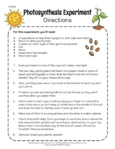 Photosynthesis Plant Growth Experiment Printable Instructions